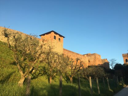 Wine Tour of Montecarlo